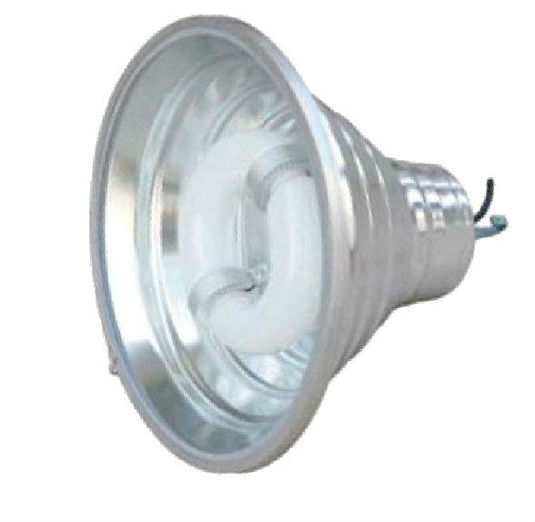 Canopy Light 02-021